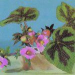 Композиция Зимняя сказка 150x150 - Цветы