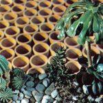 Композиция Уголок пустыни 150x150 - Цветы
