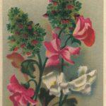 Композиция из цветов № 0131 150x150 - Цветы