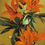 Лилии 1 150x150 - Цветы