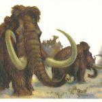 Мамонт  150x150 - Другие животные
