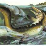 Мозазавр  150x150 - Другие животные