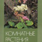 Набор открыток Бегониевые 150x150 - Цветы