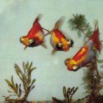 Небогляды 150x150 - Аквариумные рыбки