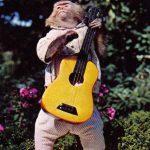 Обезьяна с гитарой  150x150 - Другие животные