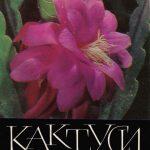 Обложка. Эпифиллюм гибридный 150x150 - Цветы