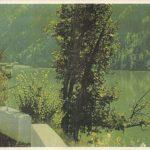 Озеро Рица 2 150x150 - Пейзажи