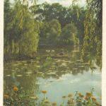 Озеро водных птиц в Пекинском Зоопарке 150x150 - Пейзажи