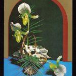 Орхидеи на открытках 0007 150x150 - Цветы