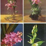 Орхидеи на открытках 0011 150x150 - Цветы