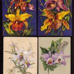 Орхидеи на открытках 0013 150x150 - Цветы