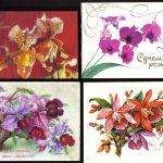 Орхидеи на открытках 0014 150x150 - Цветы