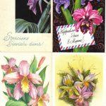 Орхидеи на открытках 0016 150x150 - Цветы