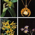 Орхидеи на открытках 0063 150x150 - Цветы