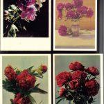 Открытки № 0005 0008 150x150 - Цветы
