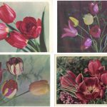 Откр. № 0005 0008 1 150x150 - Цветы