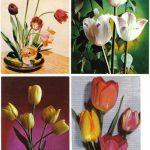 Откр. № 0017 0020 150x150 - Цветы