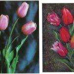 Откр. № 0025 0026 150x150 - Цветы