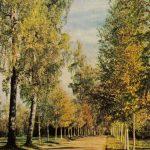Павловск. Берёзовая аллея 150x150 - Пейзажи