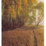 Подмосковье 29 150x150 - Пейзажи