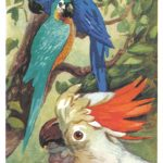 Попугаи 2 150x150 - Птицы