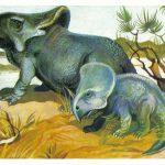 Протоцератопсы  150x150 - Другие животные