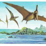 Птеранодоны  150x150 - Другие животные