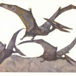 Птеранодон  150x150 - Другие животные