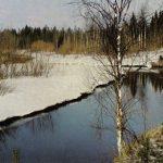 Ранняя весна в Подмосковье 150x150 - Пейзажи