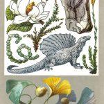 Реликтовые растения 150x150 - Удивительные растения