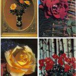 Роза 00077 00080 150x150 - Цветы