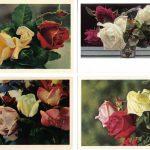 Роза 00097 00100 150x150 - Цветы