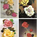 Роза 00129 00132 150x150 - Цветы