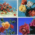 Роза 00149 00152 150x150 - Цветы