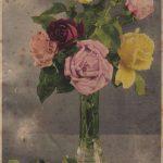 Роза 00168 150x150 - Цветы
