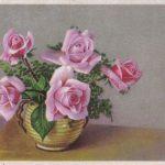 Роза 00171 150x150 - Цветы