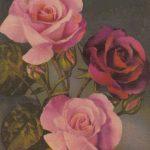 Роза 00173 150x150 - Цветы