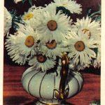 Ромашки в вазе 150x150 - Цветы