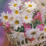 Ромашки в корзине 2 150x150 - Цветы
