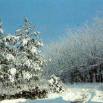 Русская зима 150x150 - Пейзажи