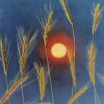 Русская природа. Август 150x150 - Пейзажи