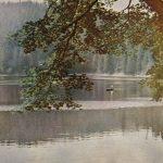 Русская природа. Июль 150x150 - Пейзажи