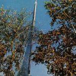 Русская природа. Октябрь 150x150 - Пейзажи