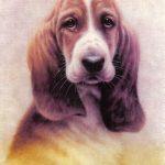 Собака  150x150 - Другие животные