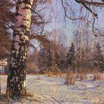 Старая берёза 1 150x150 - Пейзажи