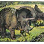 Трицератопсы  150x150 - Другие животные