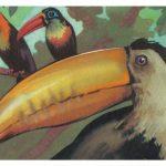 Туканы 150x150 - Птицы