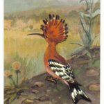 Удод 2 150x150 - Птицы