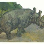Уинтатерий  150x150 - Другие животные