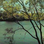У реки 150x150 - Пейзажи
